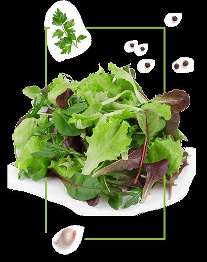 Décoration de salade