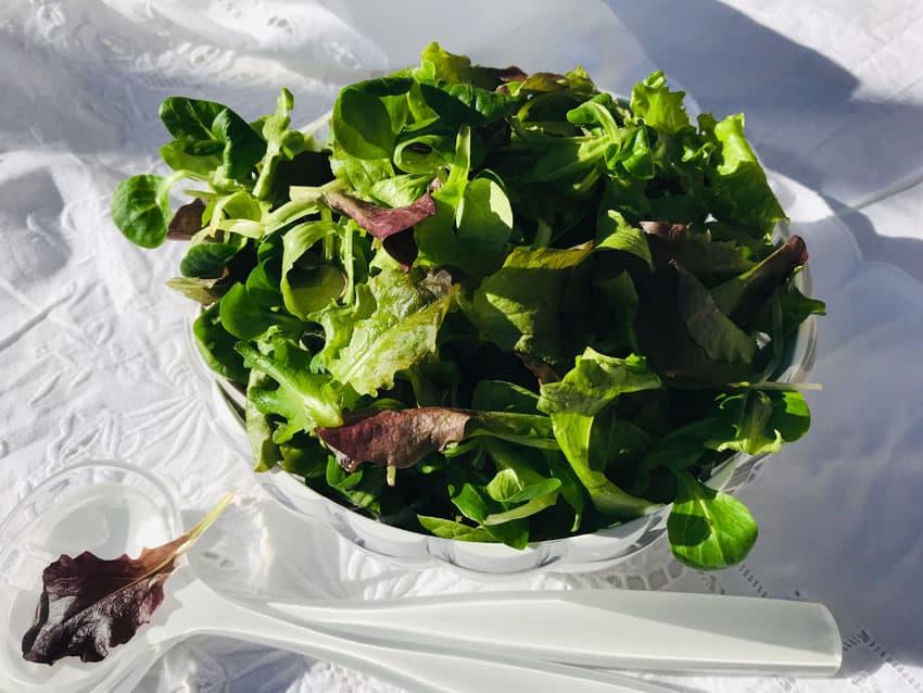 Salade mariage - SoToven